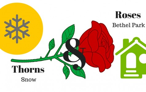 Roses & Thorns: Bethel Park and Snow