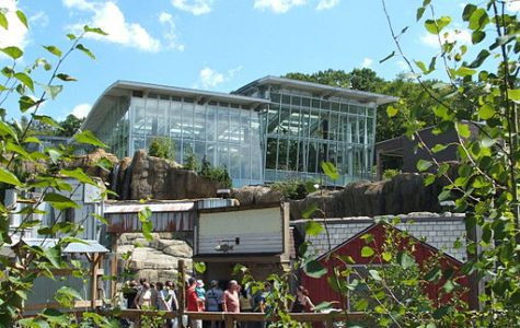 Pittsburgh Zoo offers free admission on RADical Day
