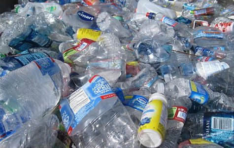 World Wednesday: The effects of using a reusable water bottle vs. plastic