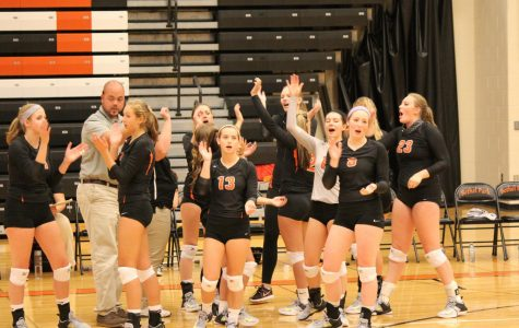 Lady Hawks vball too much for the Warriors