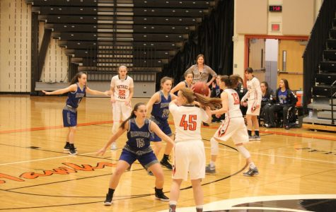 Lady Hawks rebound with win