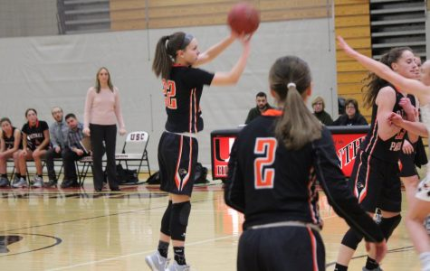 Lady Hawks soar over the Mt. Lebanon Blue Devils