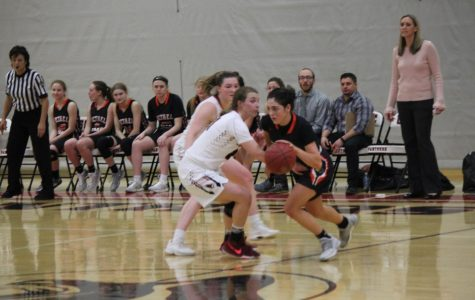 Lady Hawks take big bite out of the Big Macs