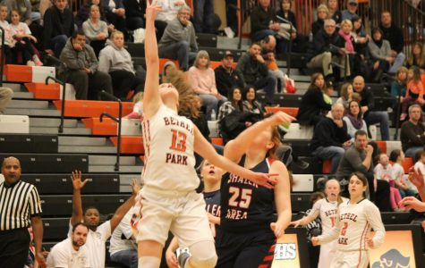 Lady Hawks soar into playoffs