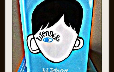'Wonder': a truly wondrous book