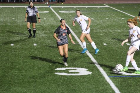 Lady Hawks fend off Panthers