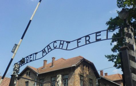 World remembers Holocaust on 74th anniversary of Auschwitz liberation