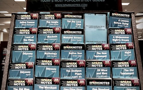 A typical shelf of SparkNotes.