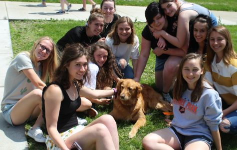 Should BPHS have its own therapy dog?