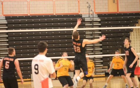 Boys volleyball on a roll