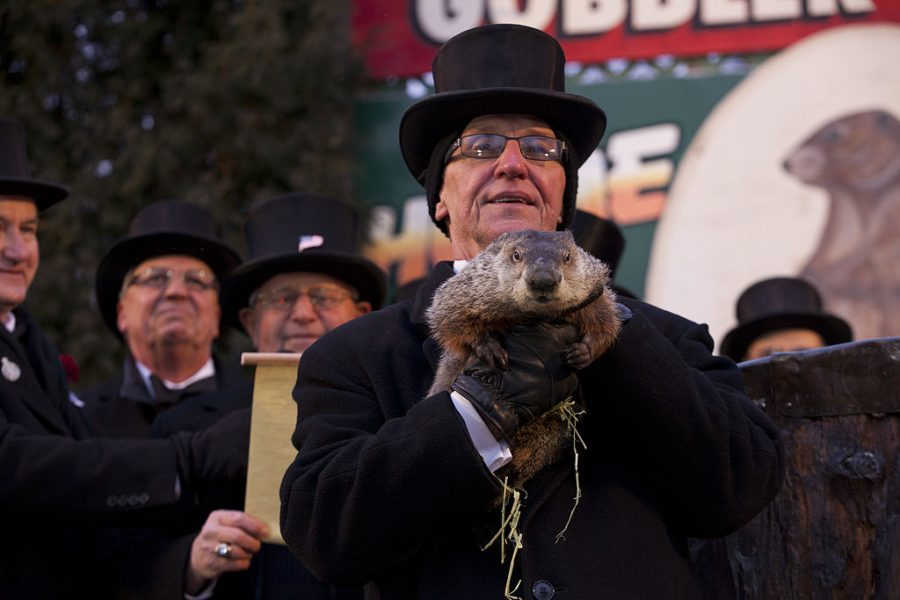 The+president+of+the+Inner+Circle+proudly+holds+up+Phil+over+a+large+crowd+on+Groundhog+Day+February+2%2C+2013.